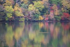 日光・湯ノ湖の秋♪4