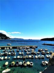 紺碧に輝くアドリア海!