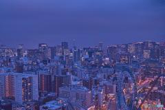 文京シビックセンター 東京駅方面を臨む