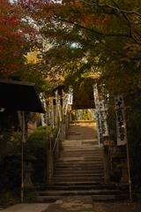 杉本寺 この先に苔の石段