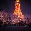 タワー夜桜