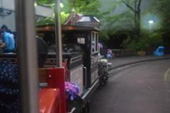 紫陽花列車に乗って