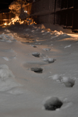 雪の東京 ー足跡ー
