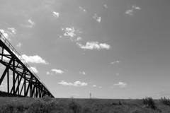 鉄橋とサギ