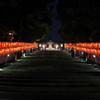 赤坂山王 夏の夜