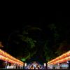 赤坂日枝神社 夏