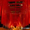 赤坂山王神社の千本鳥居