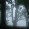 雲の間に間に(3)