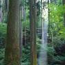 御岩神社、自然のスポットライト