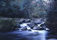 MAMIYA 645 PROで撮影した(菊池渓谷の流れ)の写真(画像)