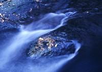 MAMIYA 645 PROで撮影した(菊池渓谷)の写真(画像)