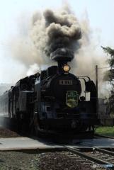 Steam Locomotive 函館大沼号