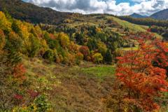 秋のスキー場