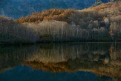 晩秋の鏡池