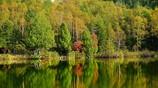 秋の木戸池