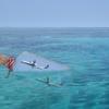 26 Bottle Planes  in A Sea (L.M.&N.G.)
