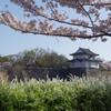 一番櫓と桜と雪柳