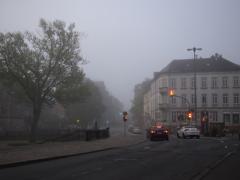 朝霧の信号待ち