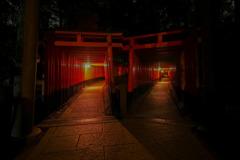 伏見稲荷 夜3