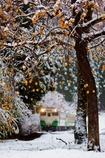 大好きな情景!柿と雪とキハ40!