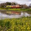 いすみ鉄道の田園風景