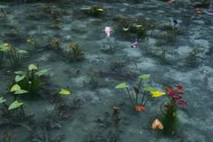 名もなき池 -モネの池-