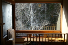 冬に訪れた温泉宿からの景色