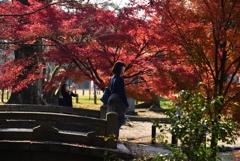 181127d上賀茂神社28