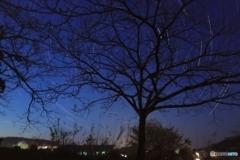 淡い光の夜