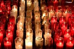 大聖堂の光①