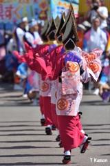 阿波踊り~女踊り⑪
