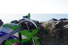 緑と岩の間