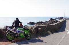 緑・私。道路と海