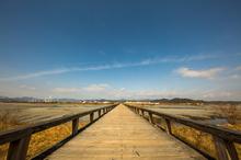 蓬莱橋。【途中からの眺め】