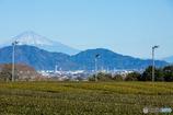 富士山と扇風機…。