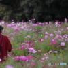 花のような人 ~Life is Wonderful編~