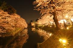 夜の弘前公園