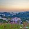 コスモスの丘からの夕景