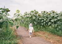 KONICA HEXAR RFで撮影した(歩く)の写真(画像)