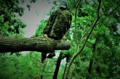 ジャングル育ち