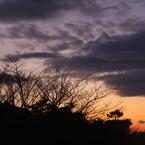 CANON Canon EOS Kiss X2で撮影した風景(一日の始まり)の写真(画像)