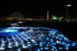 LEDの海