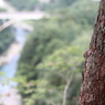 CANON Canon EOS Kiss X3で撮影した風景(鬼怒楯岩大吊橋6)の写真(画像)