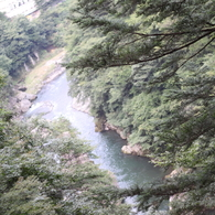 CANON Canon EOS Kiss X3で撮影した風景(鬼怒楯岩大吊橋1)の写真(画像)