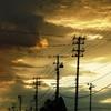 並ぶ電信柱