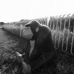 RICOH RICOH GX200で撮影した風景(一人)の写真(画像)