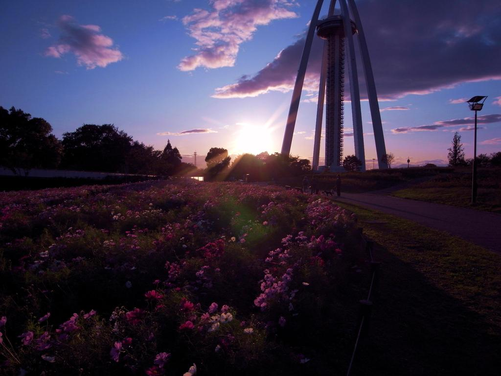 タワーと花