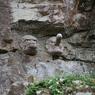 PENTAX PENTAX K-7で撮影したインテリア・オブジェクト(岩天狗)の写真(画像)