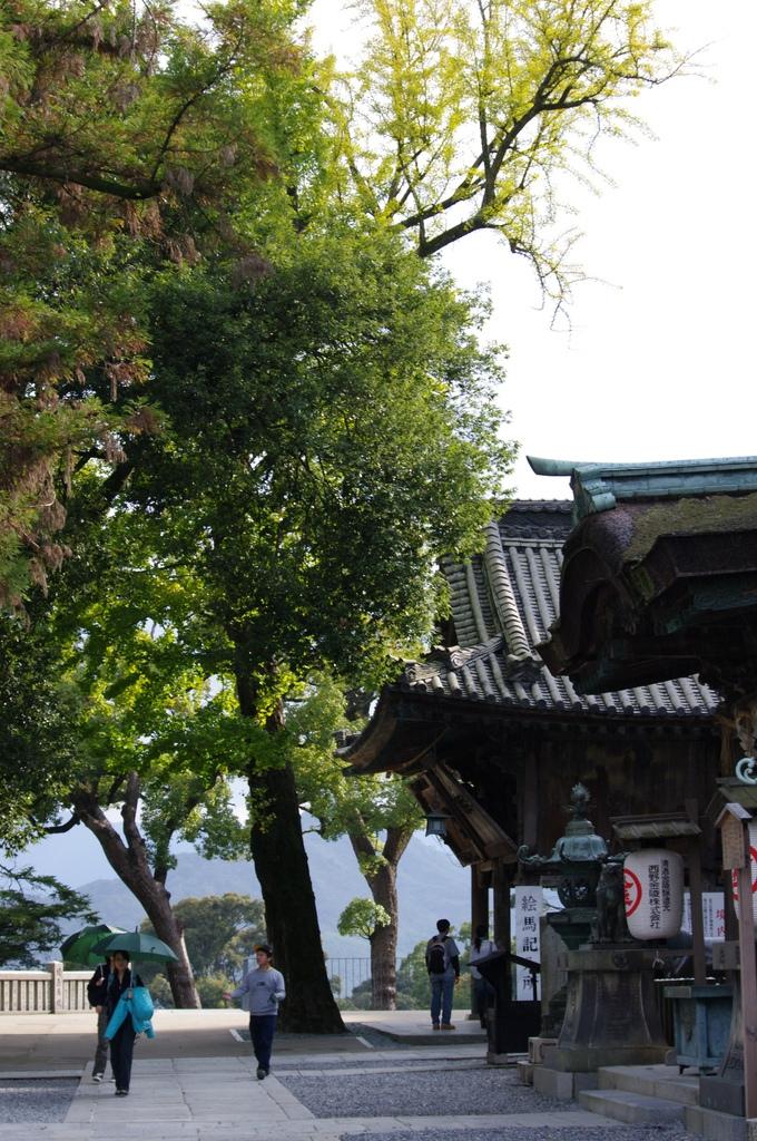 ご神木と三穂津姫社。