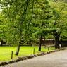 PENTAX PENTAX K-7で撮影した風景(静寂。。。日本。。。。。)の写真(画像)